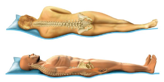 position du corps